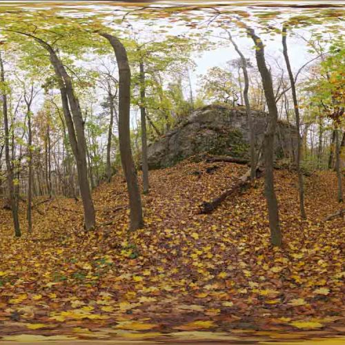 Autumn Forest 01 HDRI