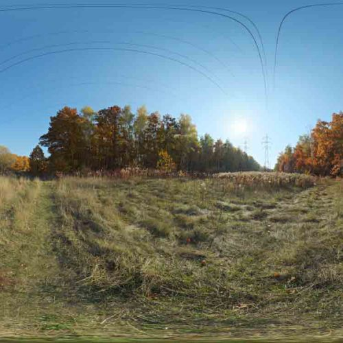 Autumn Meadow HDRI
