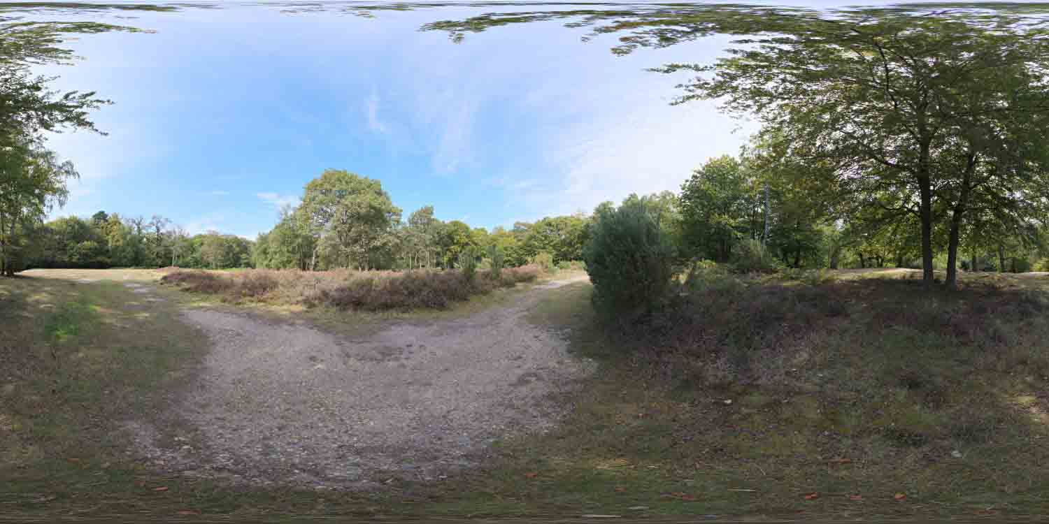 Epping Forest 02 HDRI