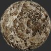 coral mud 01 pbr texture